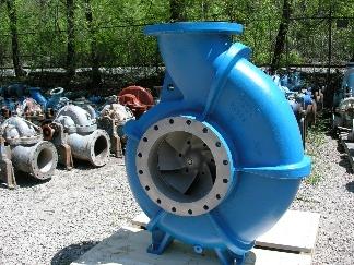 pumps-cat-pic-2.jpg