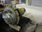 """Worthington  8FRBH-182  316 S/S  Back Pullout  Impeller Dia. - 17.00"""""""