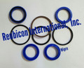 POWER STEERING CYLINDER REPAIR KIT 2WD (WIPRO)