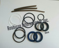 POWER STEERING CYLINDER REPAIR KIT FOR CYLINDERS WITH 1 1/4 INCH DIAMETER SHAFT (30mm)