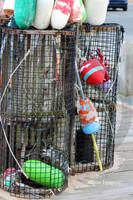 Cape Lobster Traps