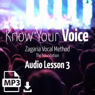 Know Your Voice - Audio Lesson 3