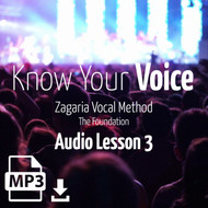 Know Your Voice - Audio Lesson 3