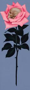 Calavera Rose