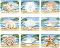 Nine Shells (Large)