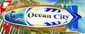 Surf City Dolphin - Ocean City