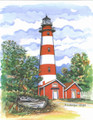 Assateaque Island Lighthouse EML46