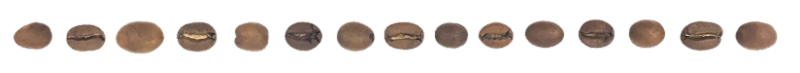 chicco-coffee-bean-divider.png