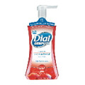 DIAL COMPLETE FOAM HAND SOAP CRANBERRY 8/7.5OZ