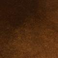 Cloves WMcam*