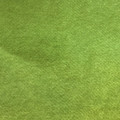 Wheat Grass ES