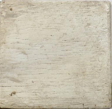 Oak Sample #372