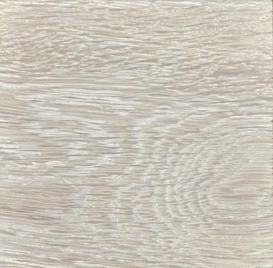 Oak Sample #864