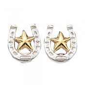 Small Stars & Horseshoe Post Earrings - ER803