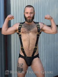 Endurance - Leather Harness
