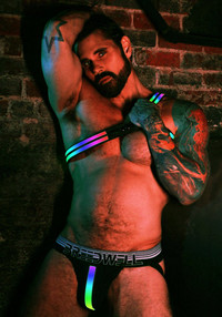 Asymmetrical RAINBOW LED Harness - Breedwell