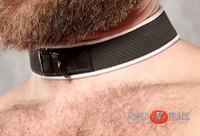Pup - Neoprene Collar