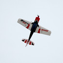 Large Dynam Sbach 342 1250mm Aerobatic RC plane (PNP) 2.4Ghz DY8945
