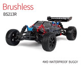 BSD BS213R 1/10 CHERI-RX The Best Eletrice Brushless OFF ROAD RC Buggy