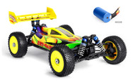 1:8 BSD Racing / RED CAT BS809T Racing High Speed Buggy Brushless RTR