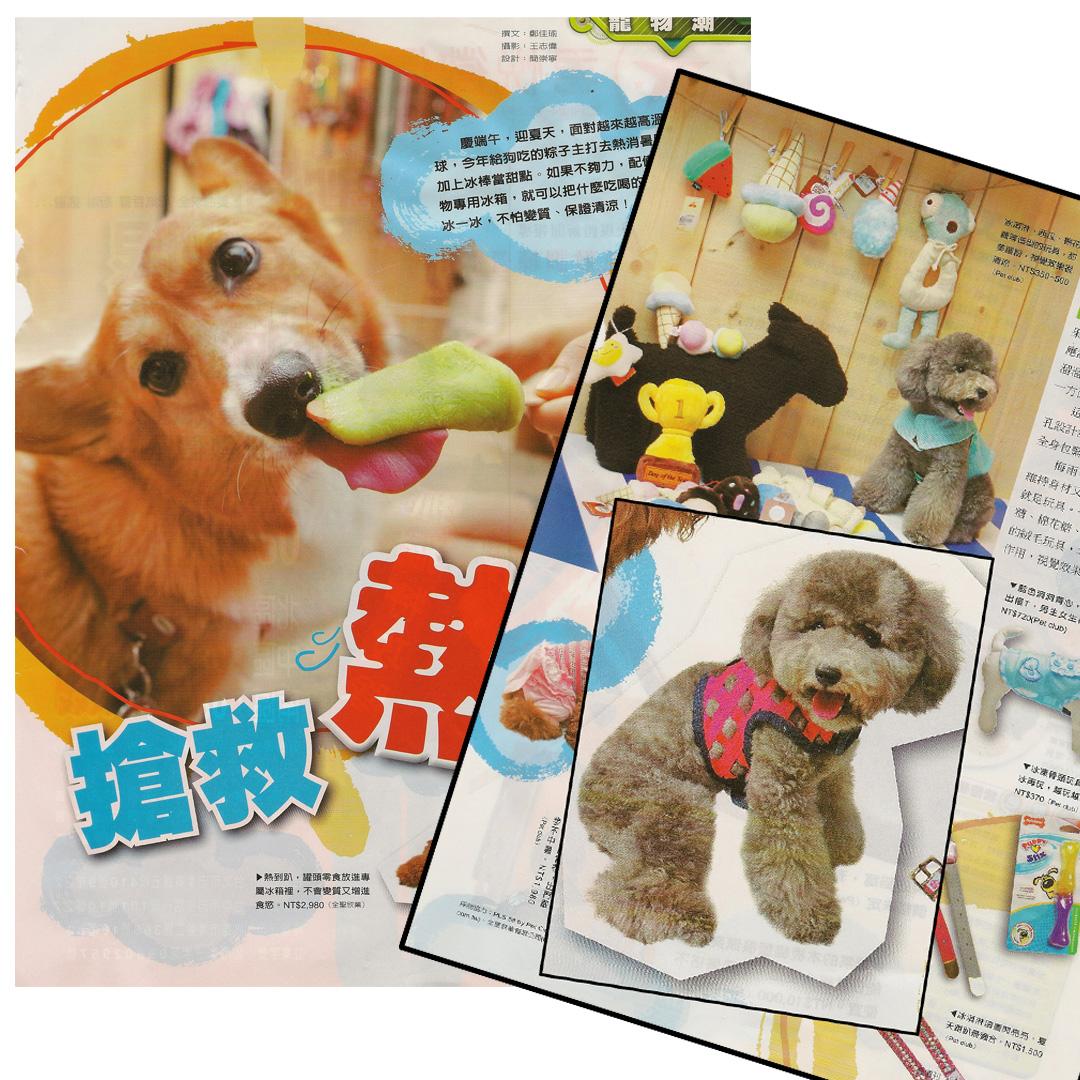 2011-tiawan-magazine-copy.jpg
