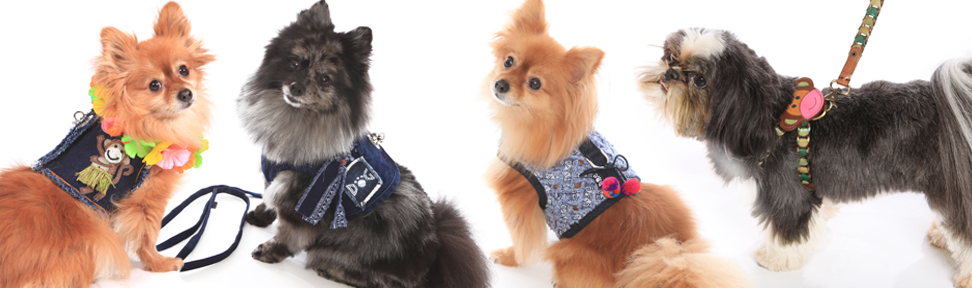 vest-and-collars-copy.jpg