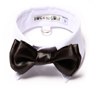 Black Bow Tie  with white shirt collar.