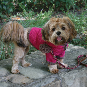 The Taylor - Pink Hand Knit Dog Hoodie