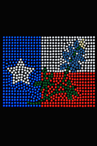 Texas Flag with Bluebonnet - Women's T-shirt