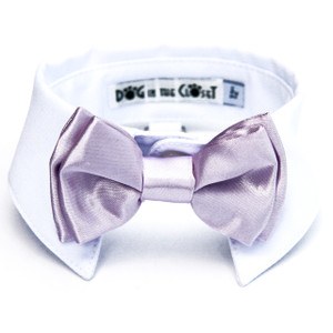 Lilac bow tie with white shirt collar.