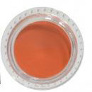 24 hour Lip Balm -  Autumn Sun #04