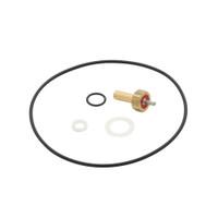 Victor Regulator Repair Kit (0790-0105)