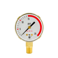 "Brass Replacement Regulator Gauge 2"" x 30 PSI RL"