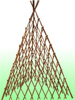 "60""H Pyramid willow accordion trellis"