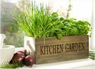 """Wood """"Kitchen Garden"""" window planter (min.2, 20/crtn) 20""""x6""""x6""""H"""