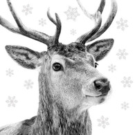 "Lunch napkins - Black & White Deer 6.5""x6.5"""