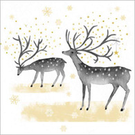 "Two reindeer on white background 6.5""x6.5"""