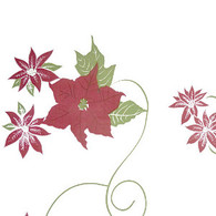 "POINSETTIA Burgundy & Green Printed Cellophane roll 40""x100'"