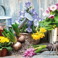 """Lunch Napkins - Gardening 6.5""""x6.5"""""""