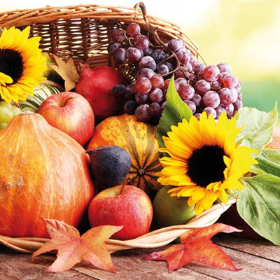 "Lunch Napkins - Harvest 6.5""x6.5"""