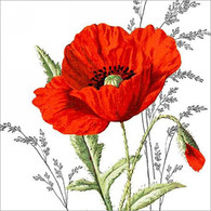 "Lunch Napkins - Red Poppy 6.5""x6.5"""