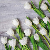 "Lunch Napkins - White Tulips 6.5""x6.5"""