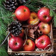 "Lunch napkins - Apples & Cinnamon 6.5""x6.5"""