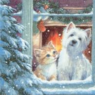 """Lunch Napkins - Puppy & Kitten 6.5"""" x 6.5"""""""