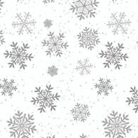 CEL2-SNOWFLAKE-WS