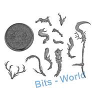Warhammer Bits: Sylvaneth Branchwych - Branchwych