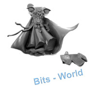 WARHAMMER BITS - HIGH ELVES ARCHMAGE & MAGE - BODY with ROBES