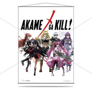 Akame Ga Kill! Wall Scroll - Heroines