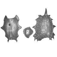 WARHAMMER BITS: IDONETH DEEPKIN AKHELIAN LEVIADON - LEVIADON SHELL