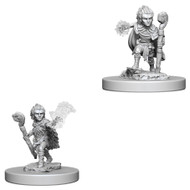 Pathfinder: Deep Cuts - Deep Cuts Unpainted Minis: Gnome Male Druid